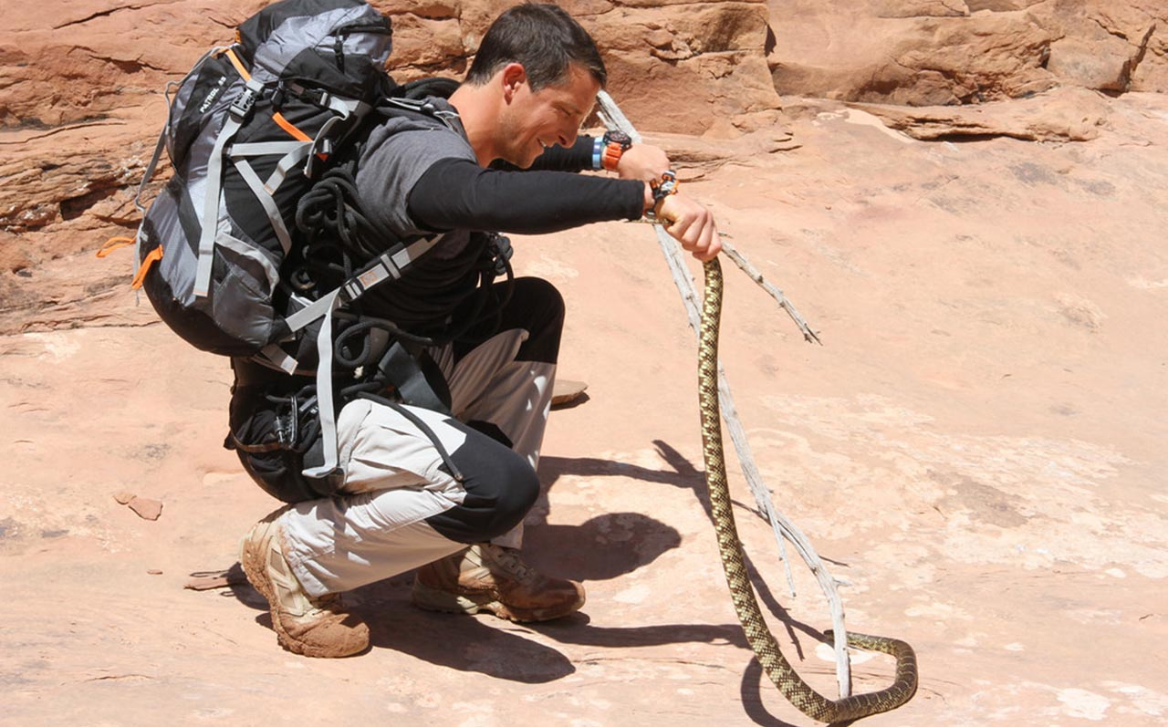 Bear Grylls eating snake