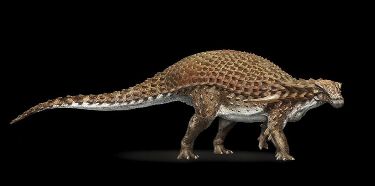 The Nodasaur