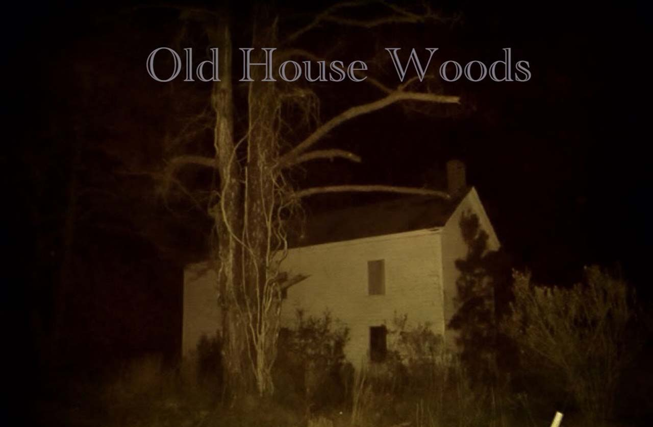 Old House Woods, Virginia