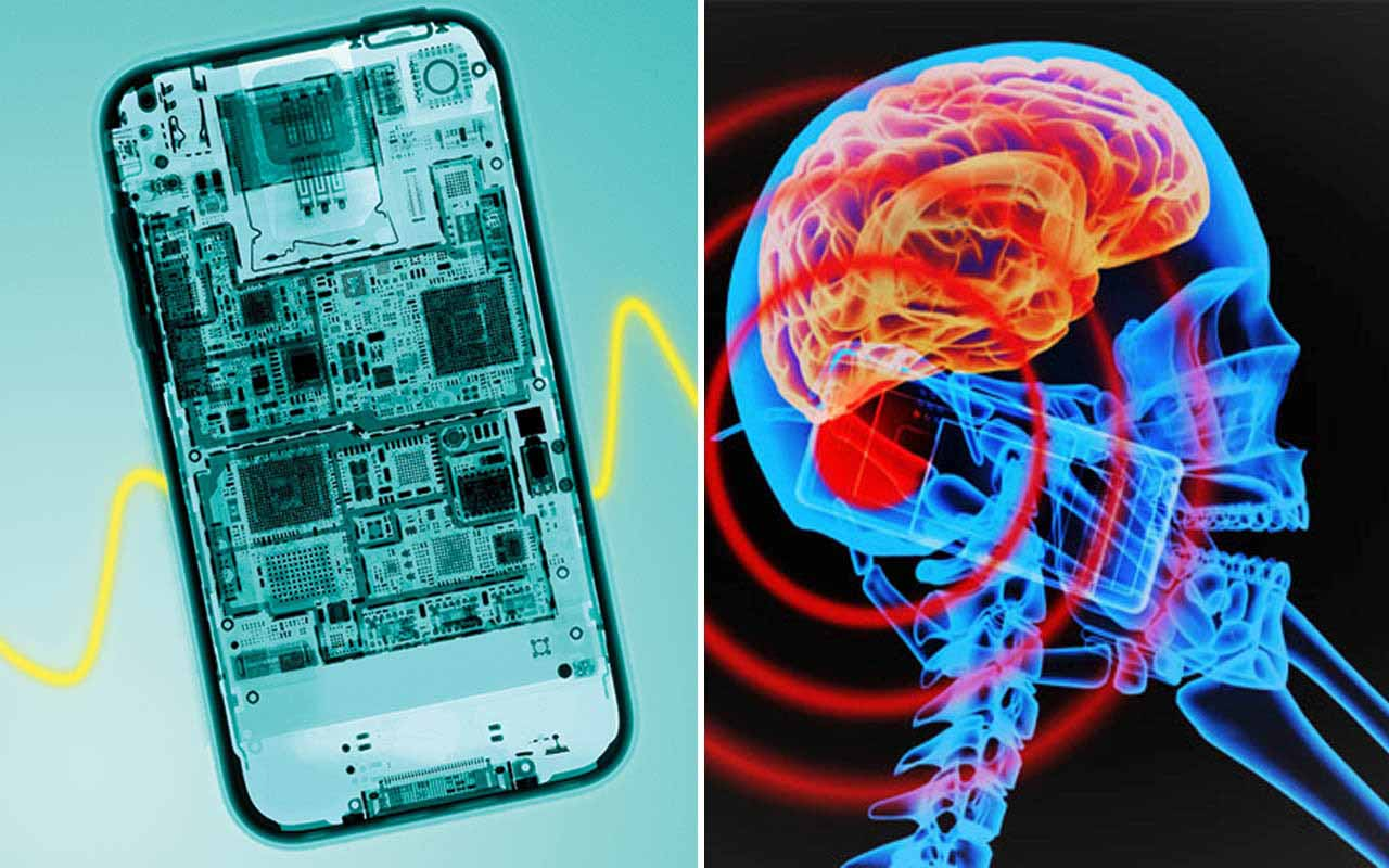 Cell phone radiation causes cancer