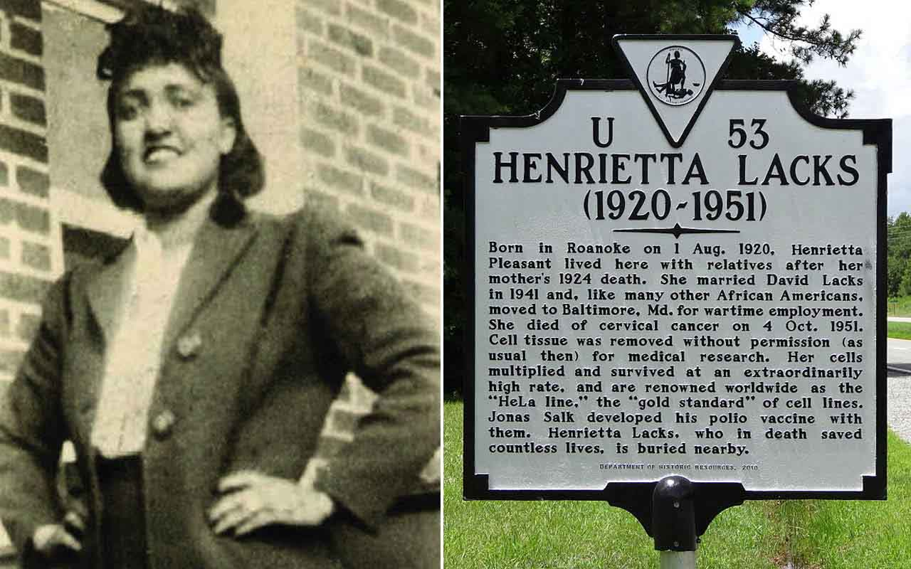 Henrietta Lacks, cell, cells, medical science, multiply