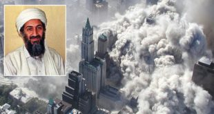 9/11, Osama Bin Laden, Terror Attack