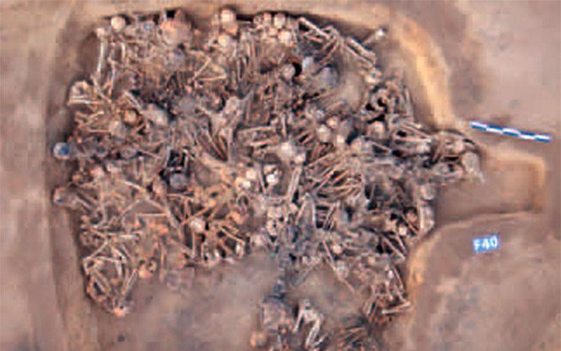 The Prehistoric Plague House