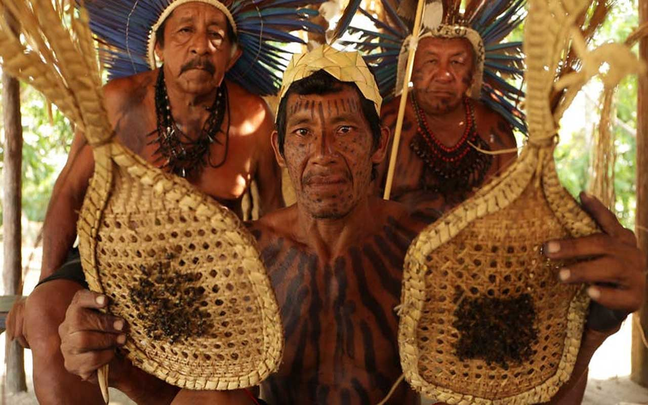 Satere-Mawe tribe. bullet ant initiation