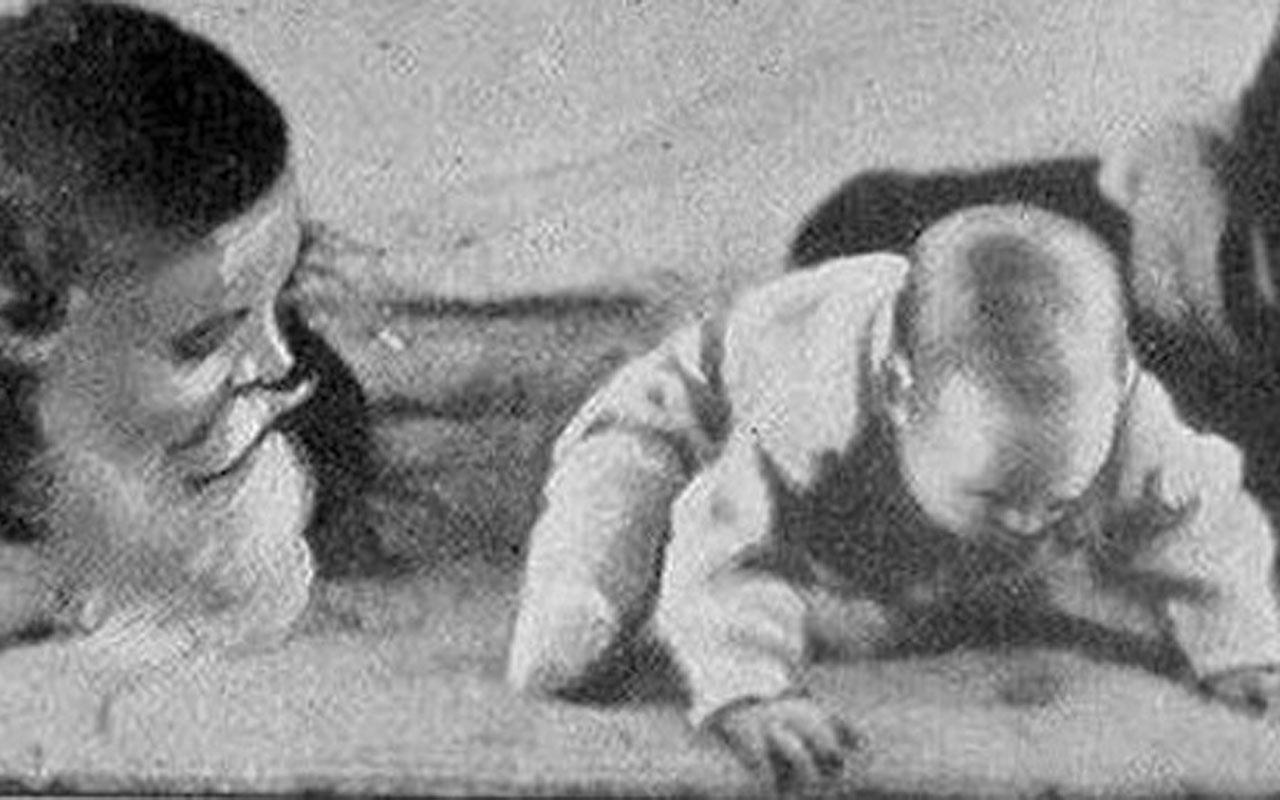 Little Albert Experiment, fact, Dr. Watson