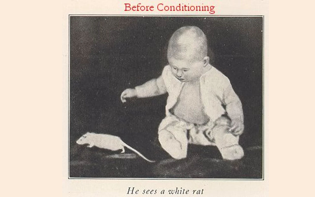 Little Albert with rat