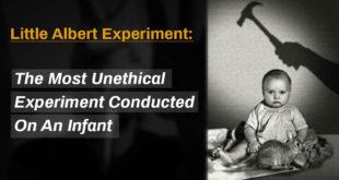 Little Albert, Mind Blowing Facts, Weird Facts, Weird World