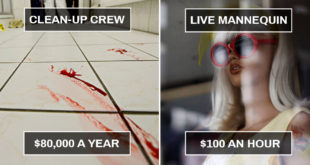 jobs, people, life, survival, cleanup crew, human mannequin,