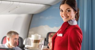 flight attendant, flying, plane, airplane, fact, facts, mind blowing facts,