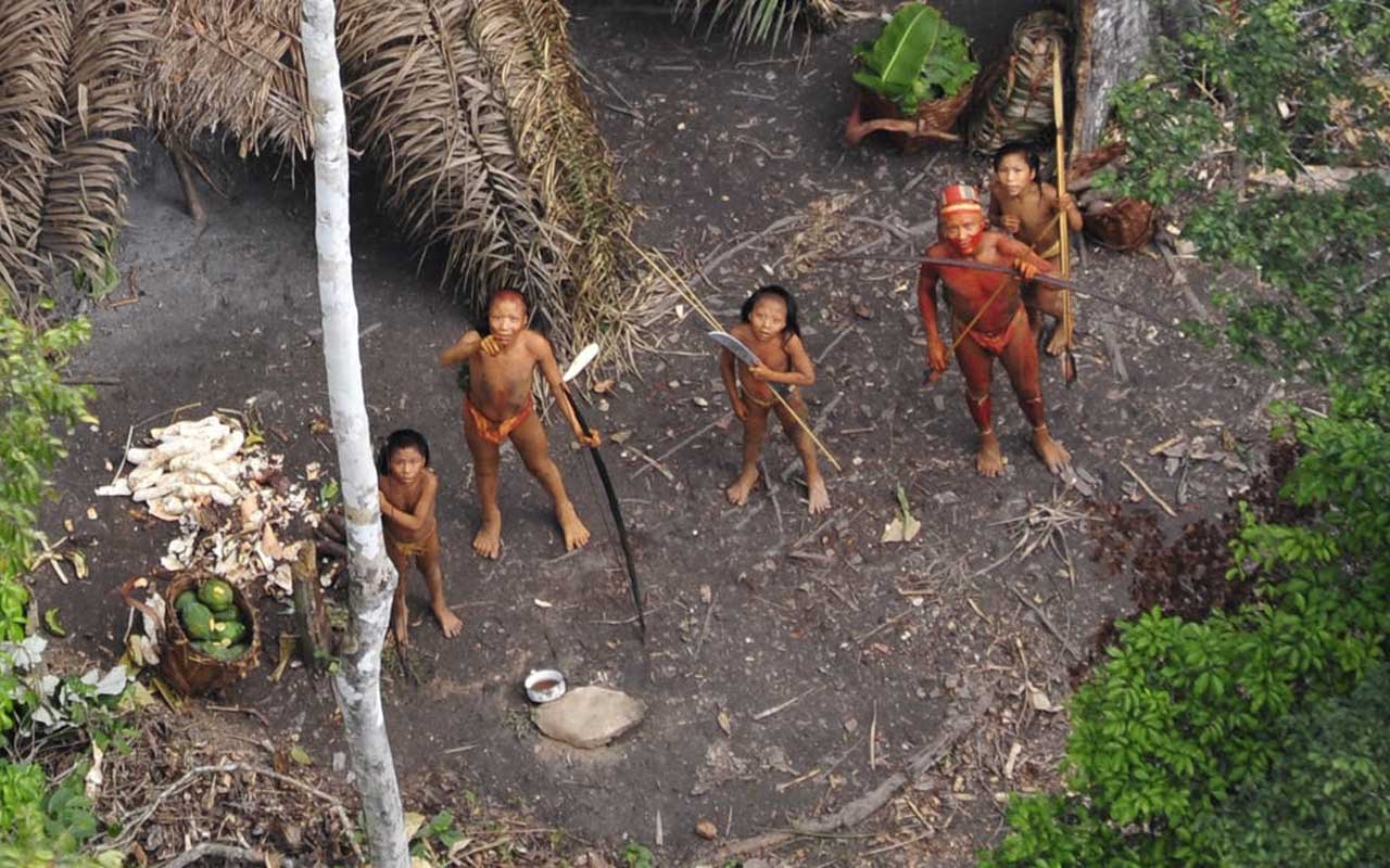 Vale do Javari, tribe, Amazon, rainforest