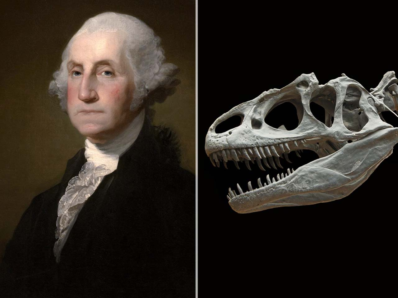George Washington died in 1799, and the first dinosaur fossil wasn't discovered until 1824, time, perception, fact, facts, life, people, president, dinosaur,