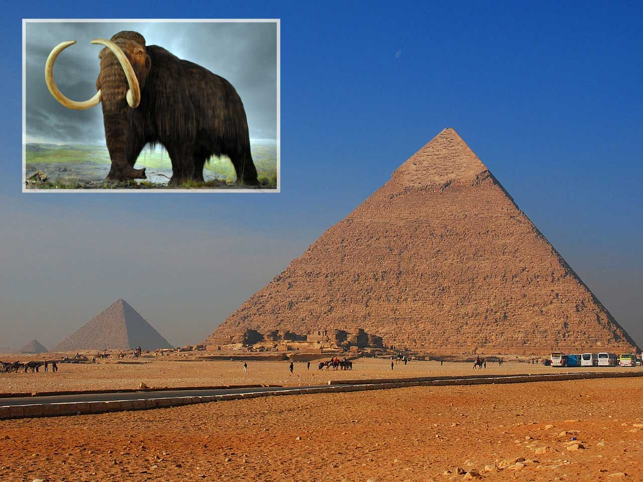 Woolly Mammoths were still alive while Egyptians were constructing the pyramids (2660 BCE).