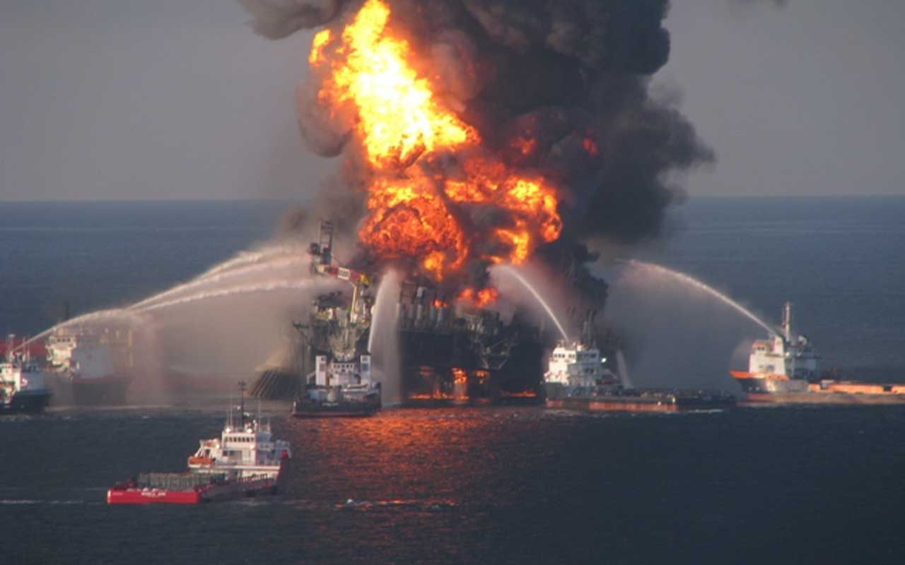 Gulf Oil Spill, marine life, sea, ocean, drilling, oil