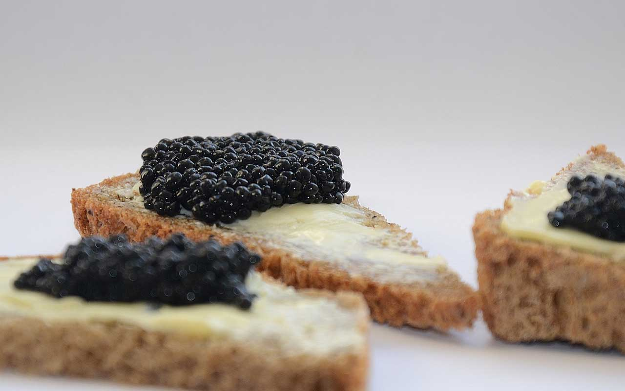 Wild Beluga Caviar, fish, sea, endangered