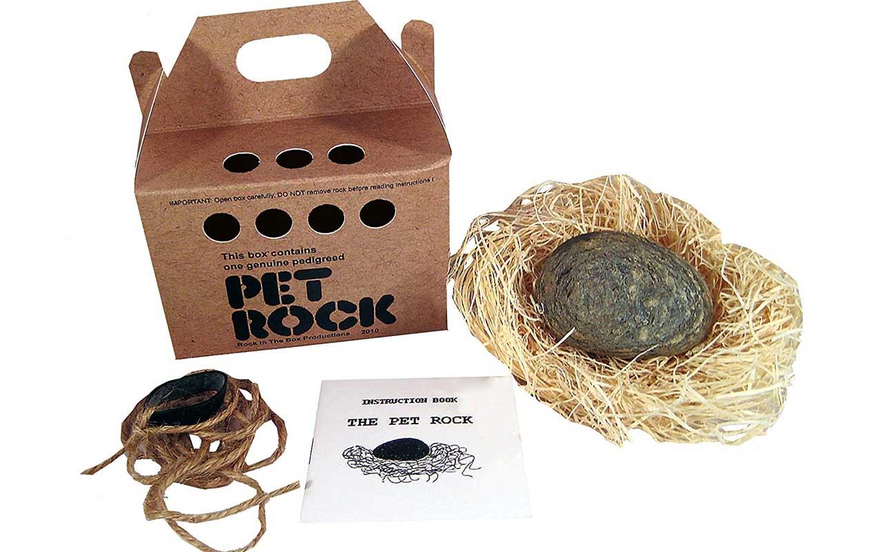 Pet rock, invention, product, millionaires