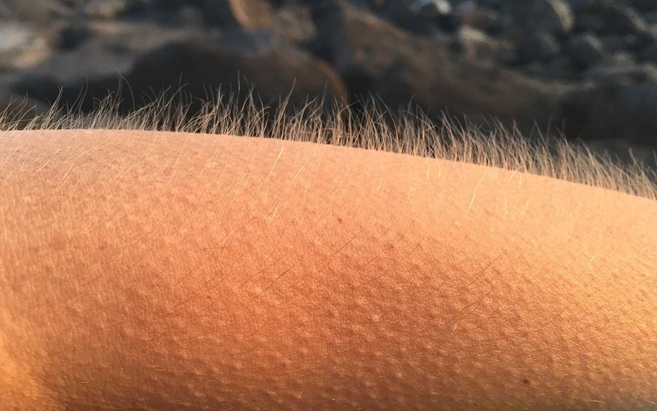 goosebumps, feeling, music, life