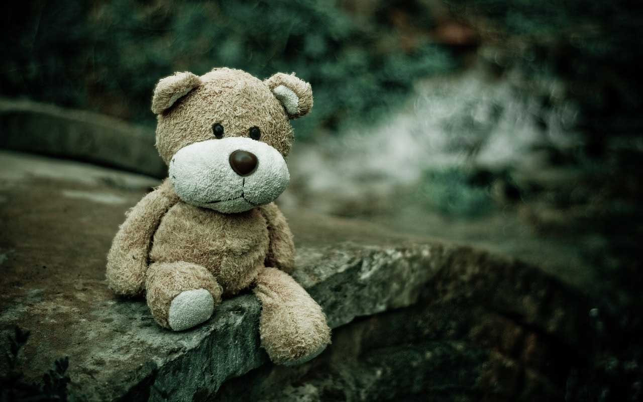 teddy bear, missing persons, police, knowledge, life