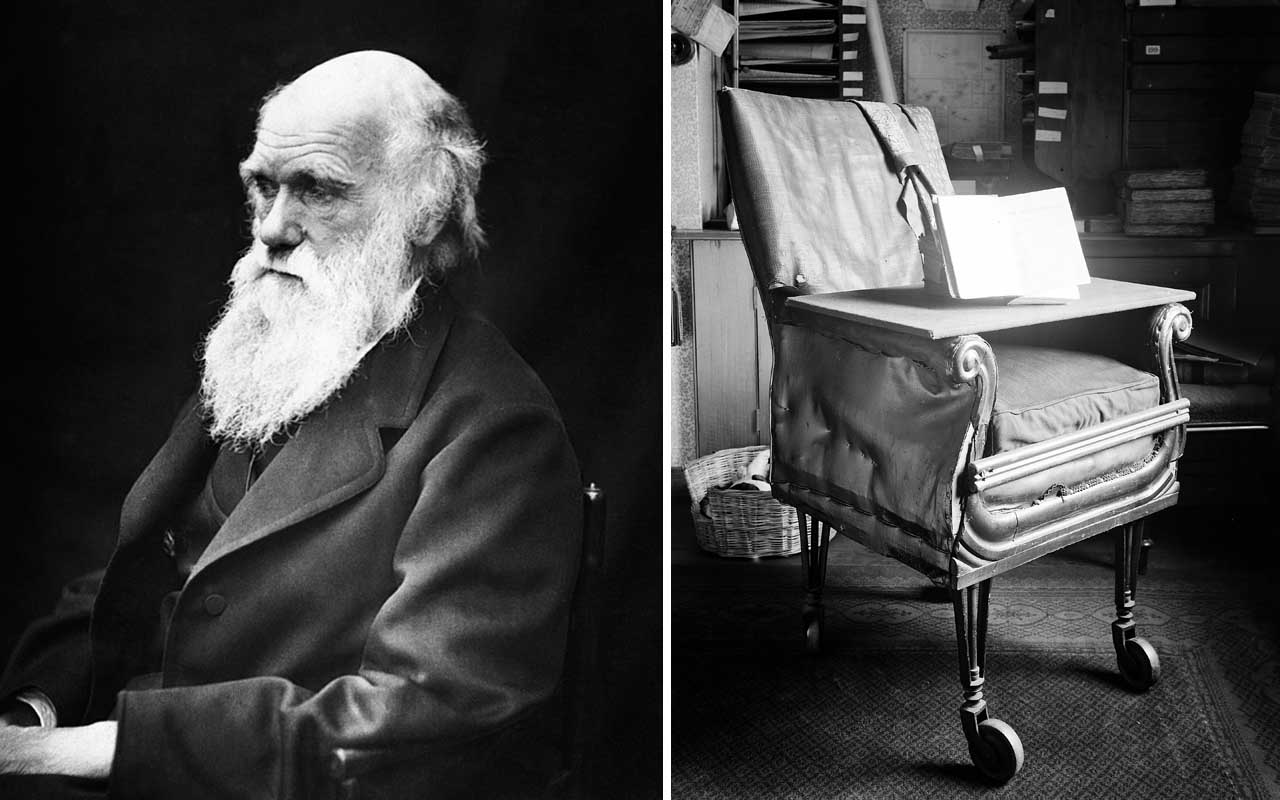 Charles Darwin, cool facts, office chair, wheels, facts, history, life, science, nature