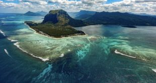 Mauritius, life, islands, facts, science