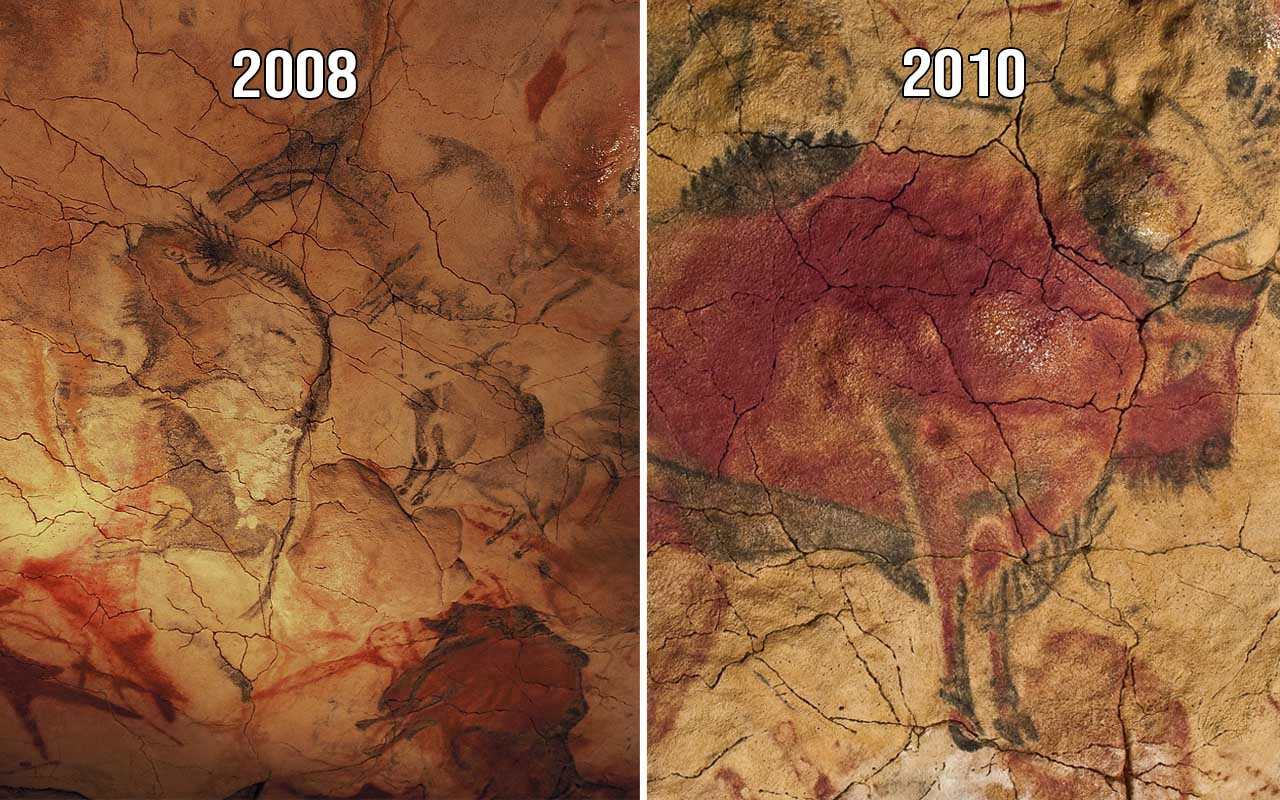 Cave of Altamira in Spain, history, facts, life, tourist