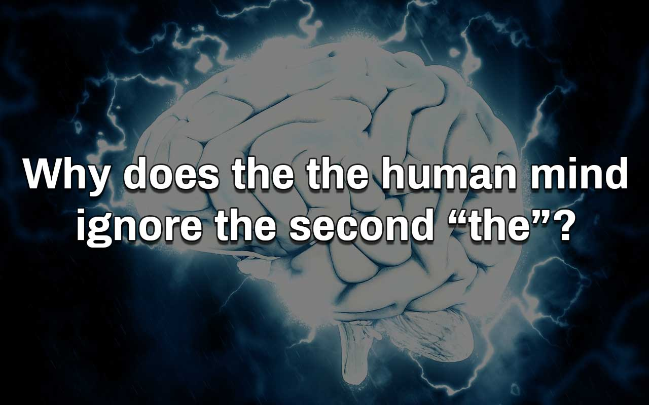 brain, human, mind, facts, interesting, life, people, weird