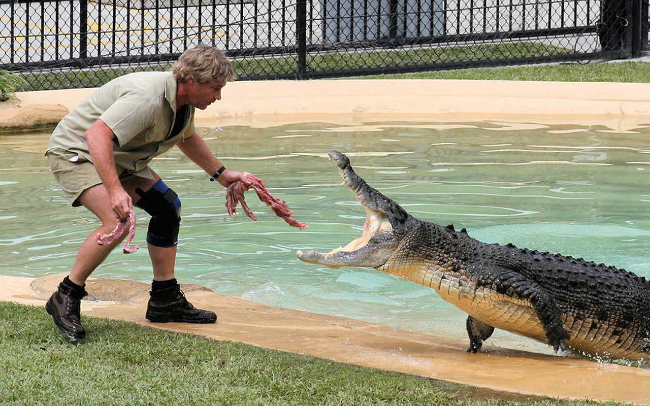 Steve Irwin, Australia, Crocodile Hunter, facts, Bindi Irwin