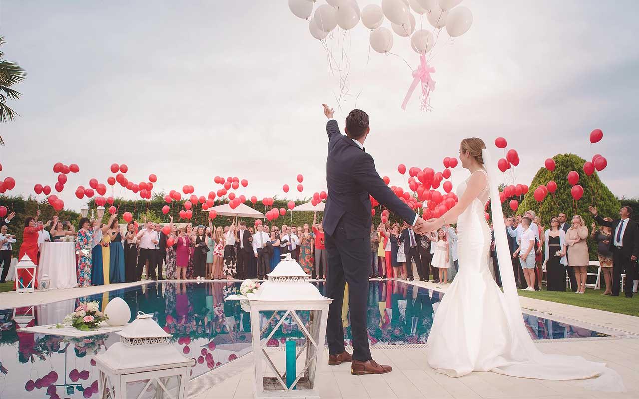 wedding, life, facts, science, true, weird, statistics