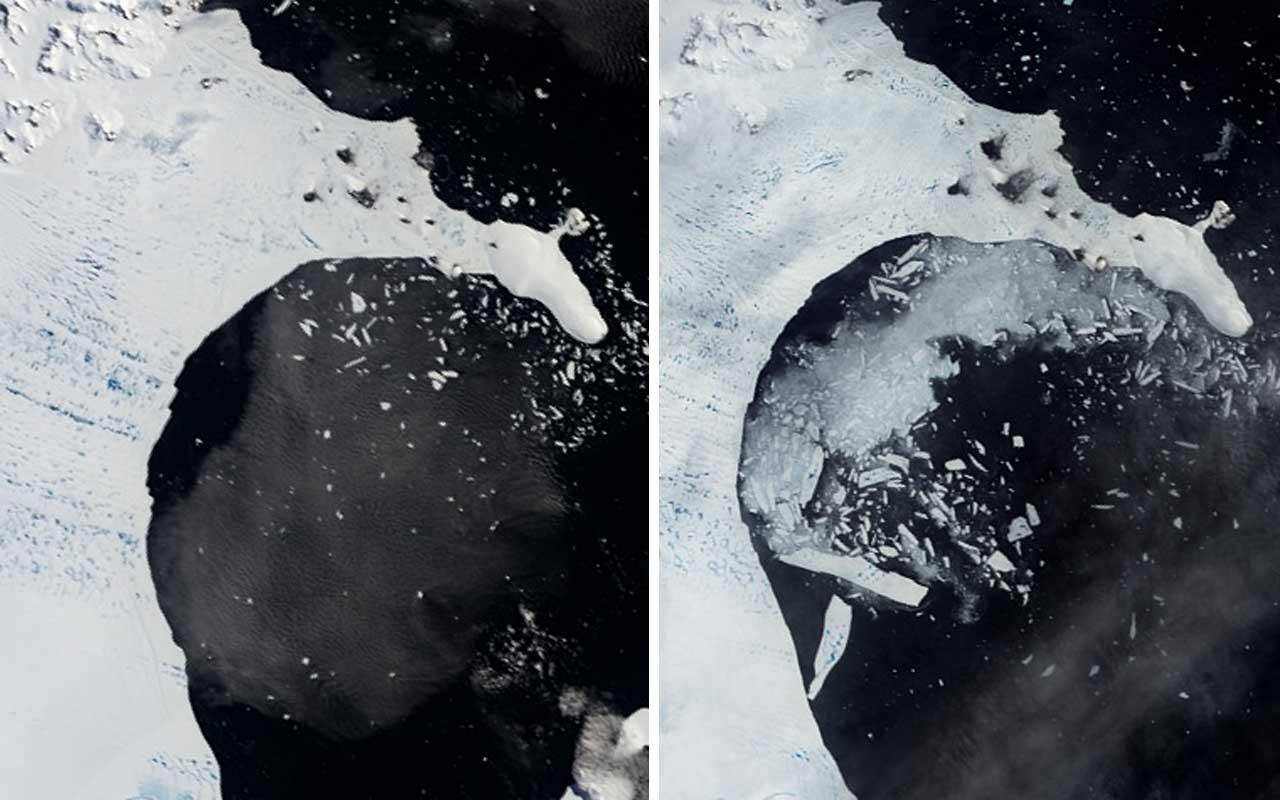 Antarctica, B Shelf, Arctic, ice, melting, global warming, life, Earth