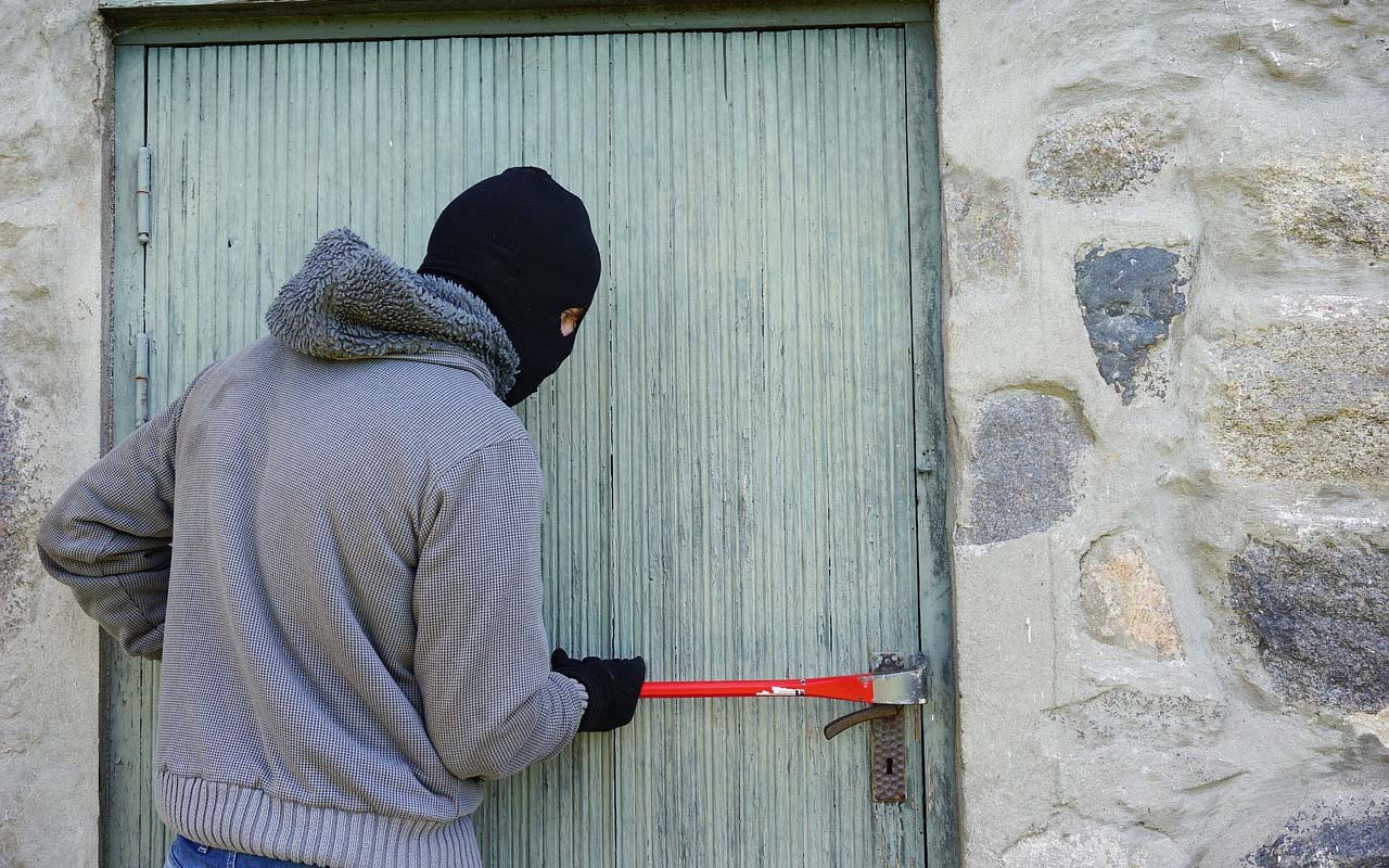 thief, storage, unit, facts, life, people, discovery