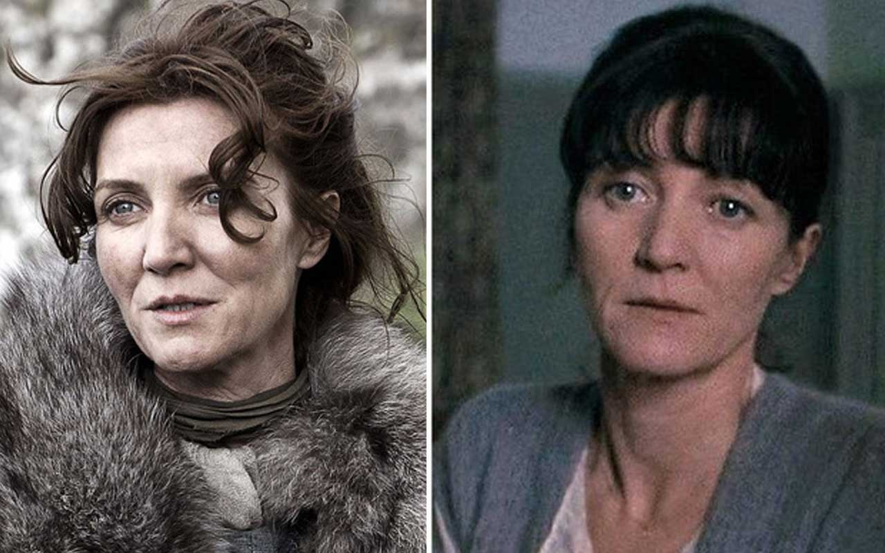 Michelle Fairley, Game of Thrones, Harry Potter, actors, facts, entertainment, life, people