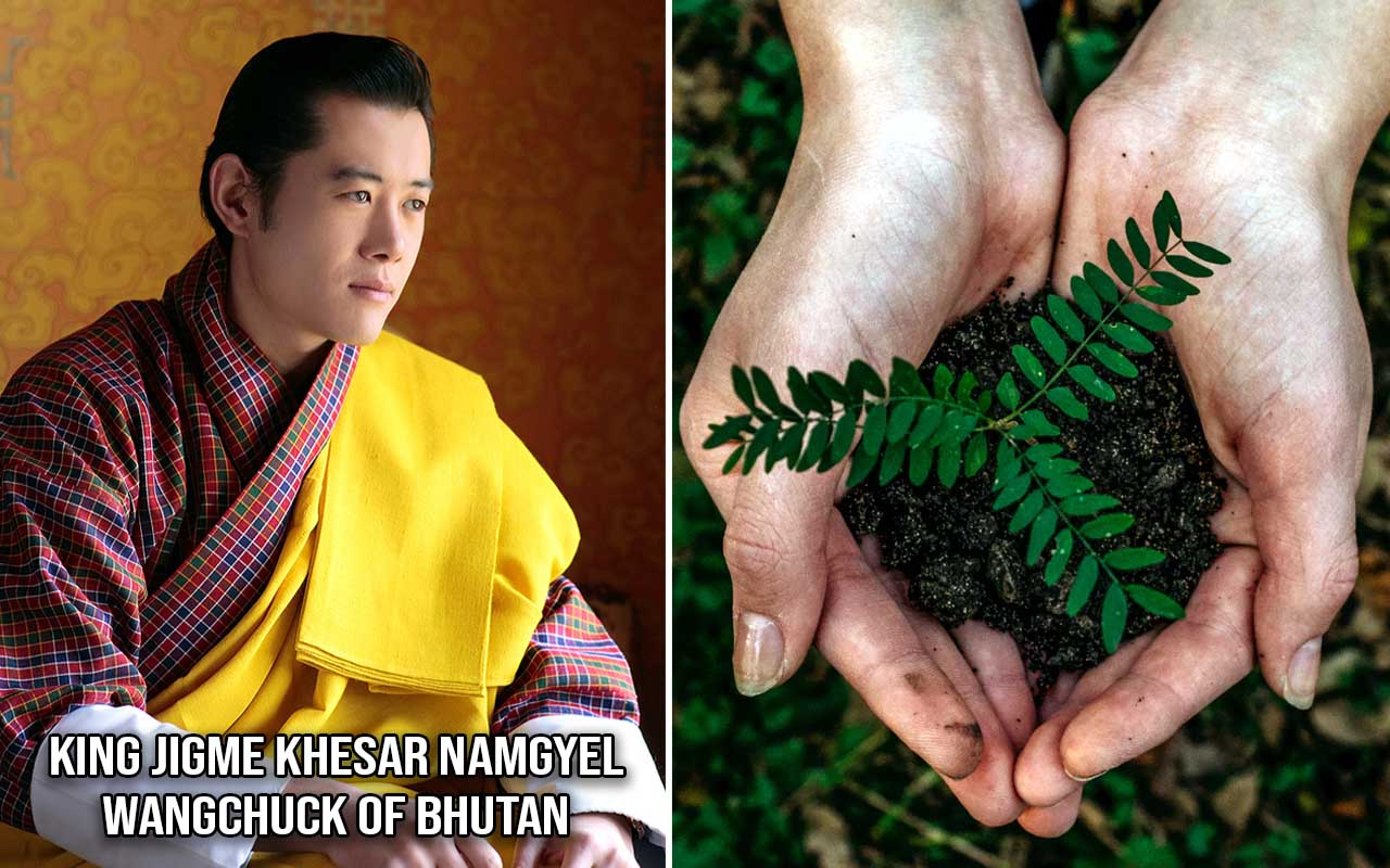 Royal Family of Bhutan, planting, trees, facts, life, people, nature, Bhutan