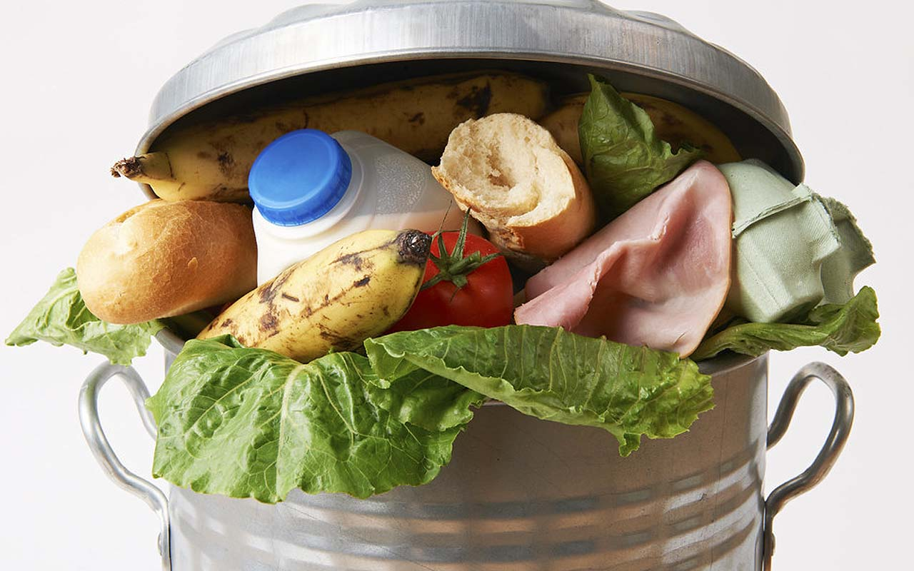 food, waste, facts, life, perspective, survival, poverty