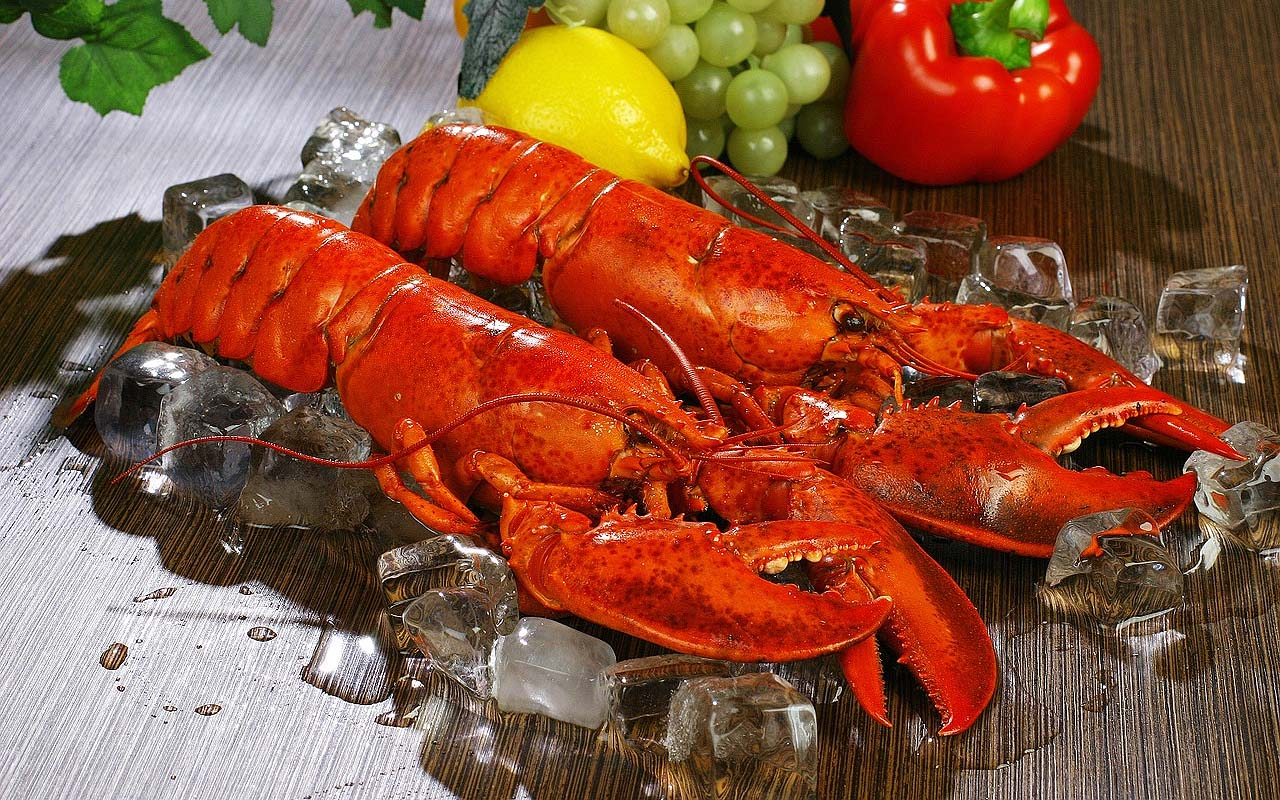 lobster, food, facts, perspective, surprising, weird, science