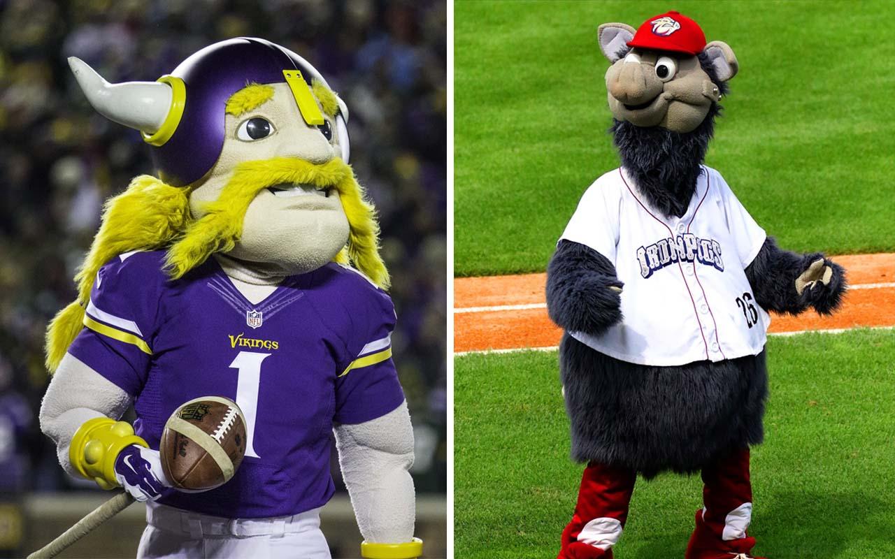 mascot, NFL, football, USA, facts, jobs