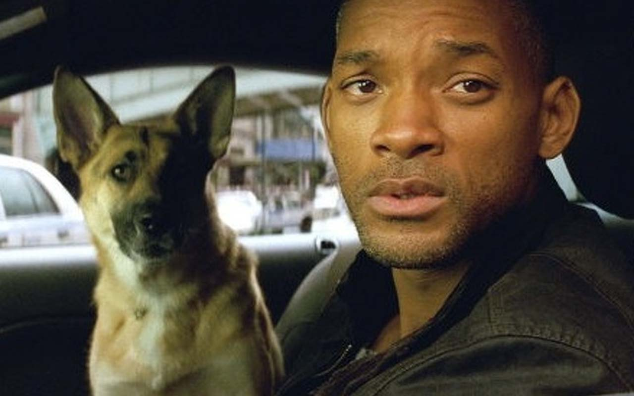 Will Smith, Abbey the dog, I am Legend, facts, Hollywood, Vegas, facts