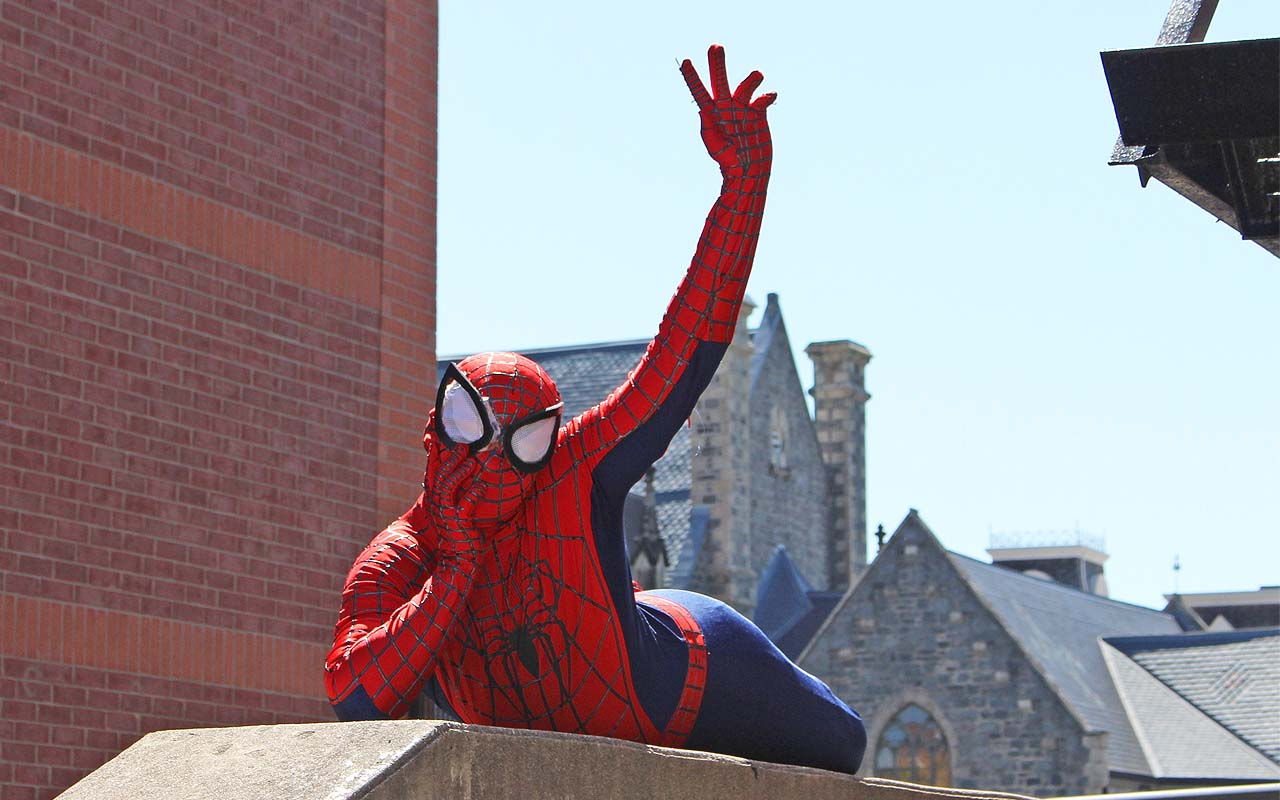 Spider-Man, people, life, facts, Marvel, universe, comic book, character