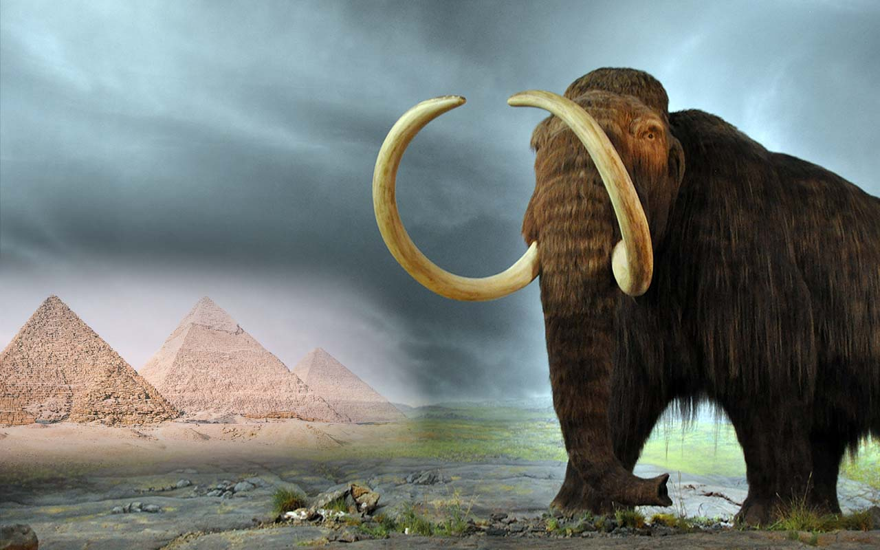 Wooly mammoths, pyramids, existed, facts, history, science, thought