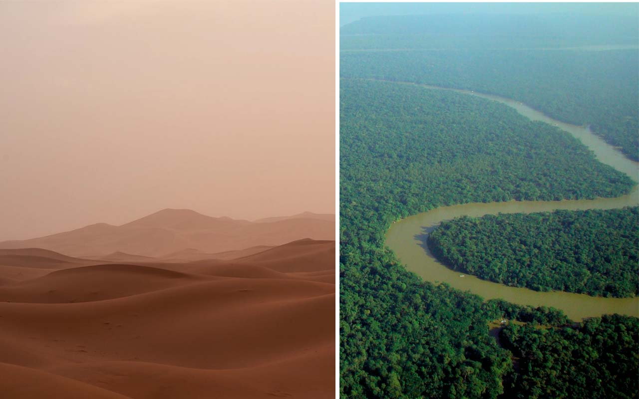 Sahara, desert, sand, winds, minerals, Amazon, rainforest, life, thrive