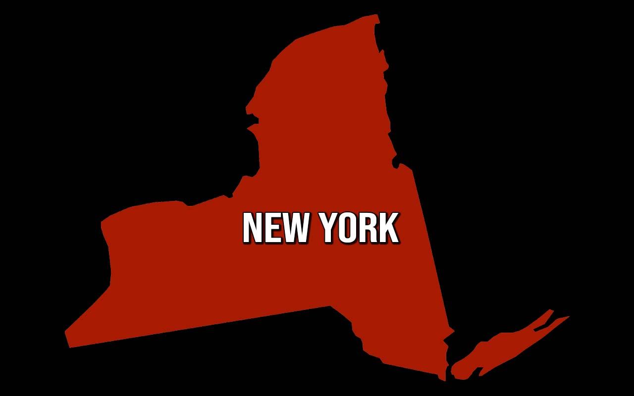 New York, bagel, tax, fun facts, random, weird