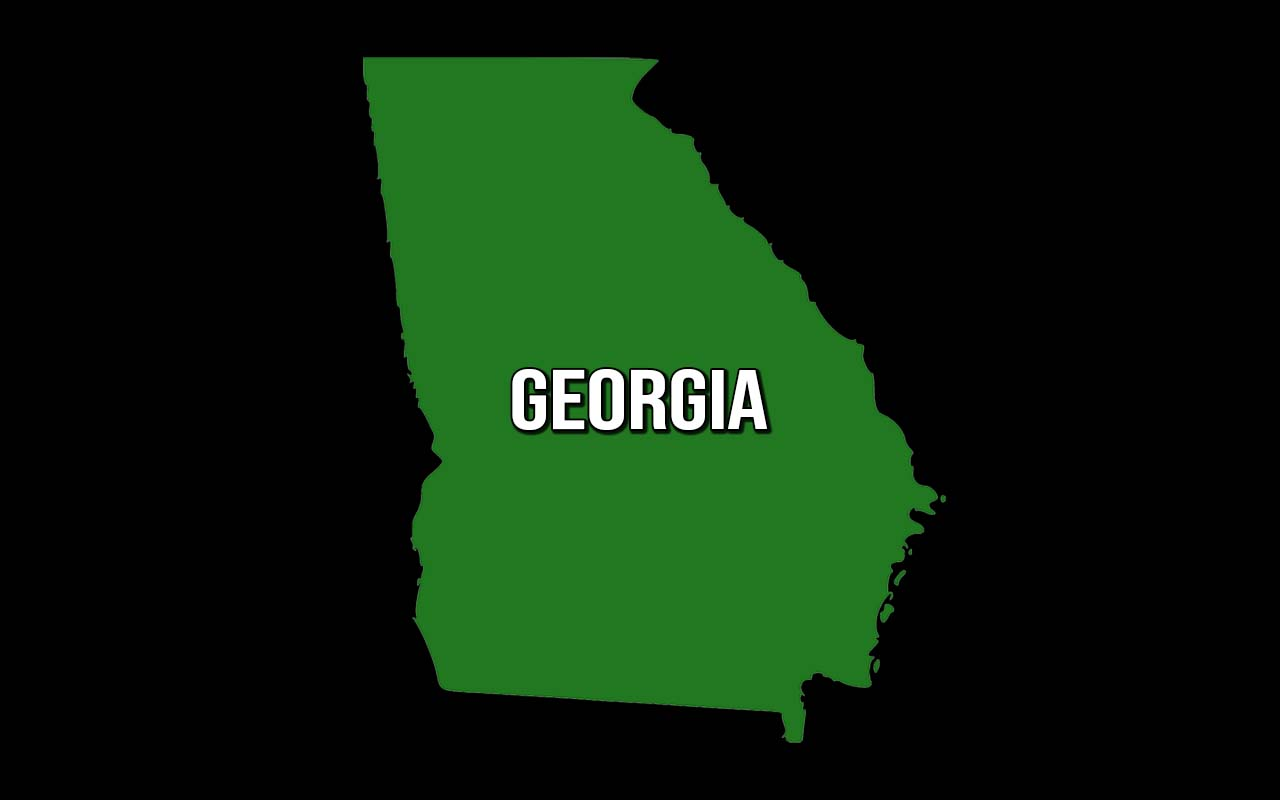 Georgia, laws, illegal, facts, people, chicken, utensils, fact