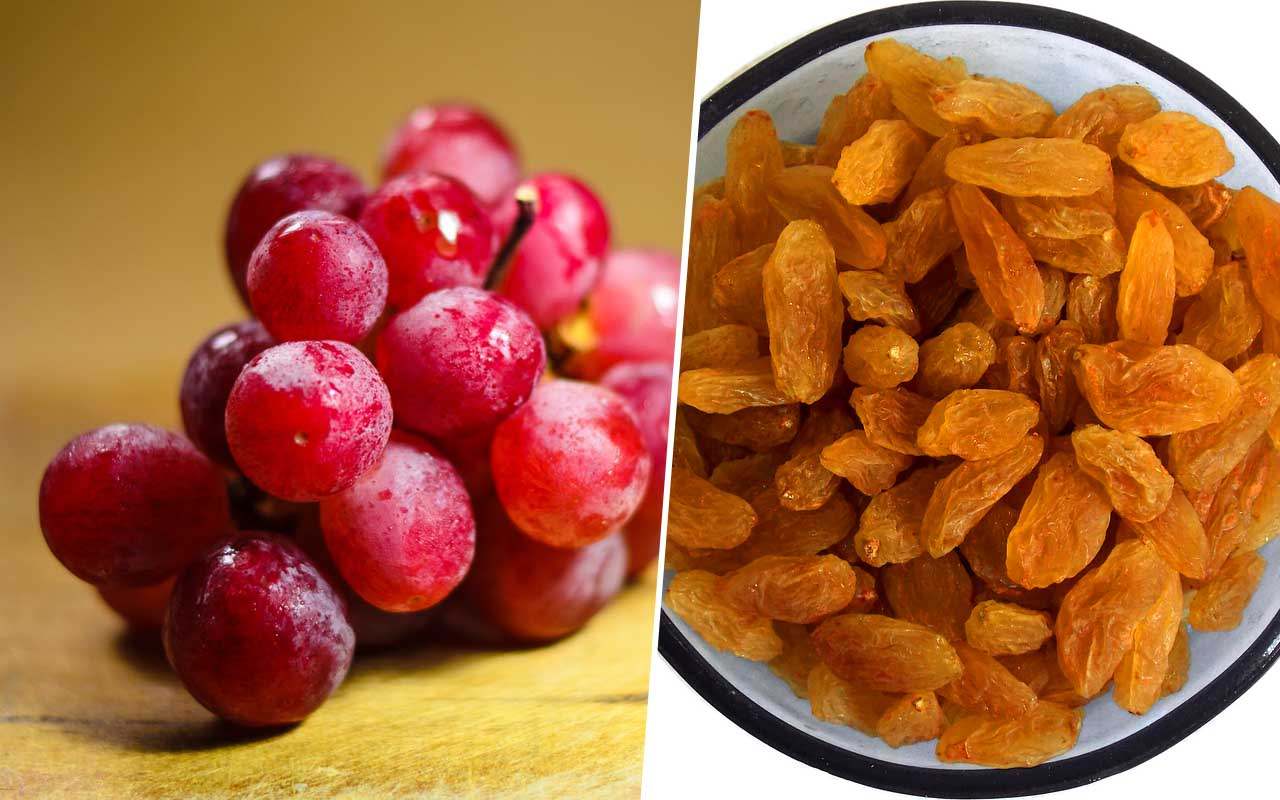 Grapes and raisins, dog, cat, pet, love, animals, foods, facts, science