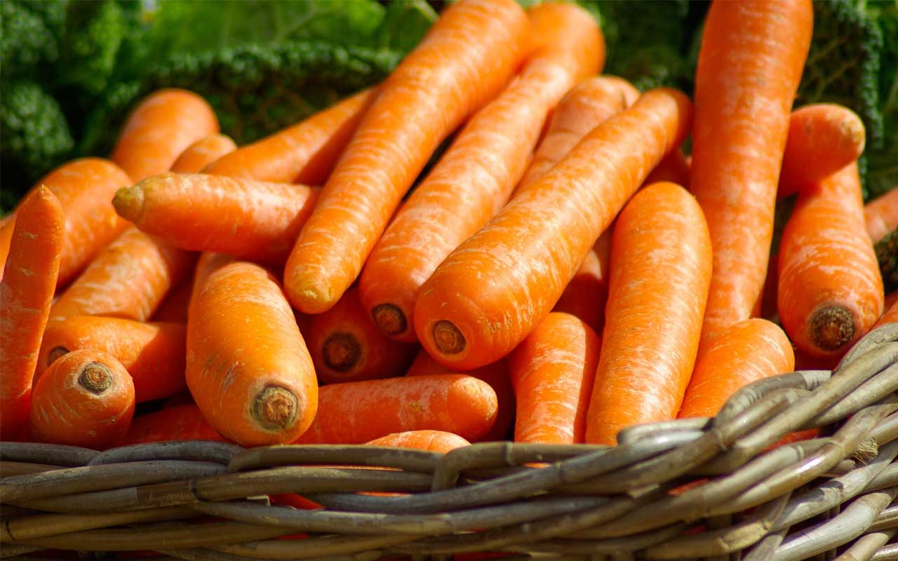 carrots, eye sight, facts, science, people, life