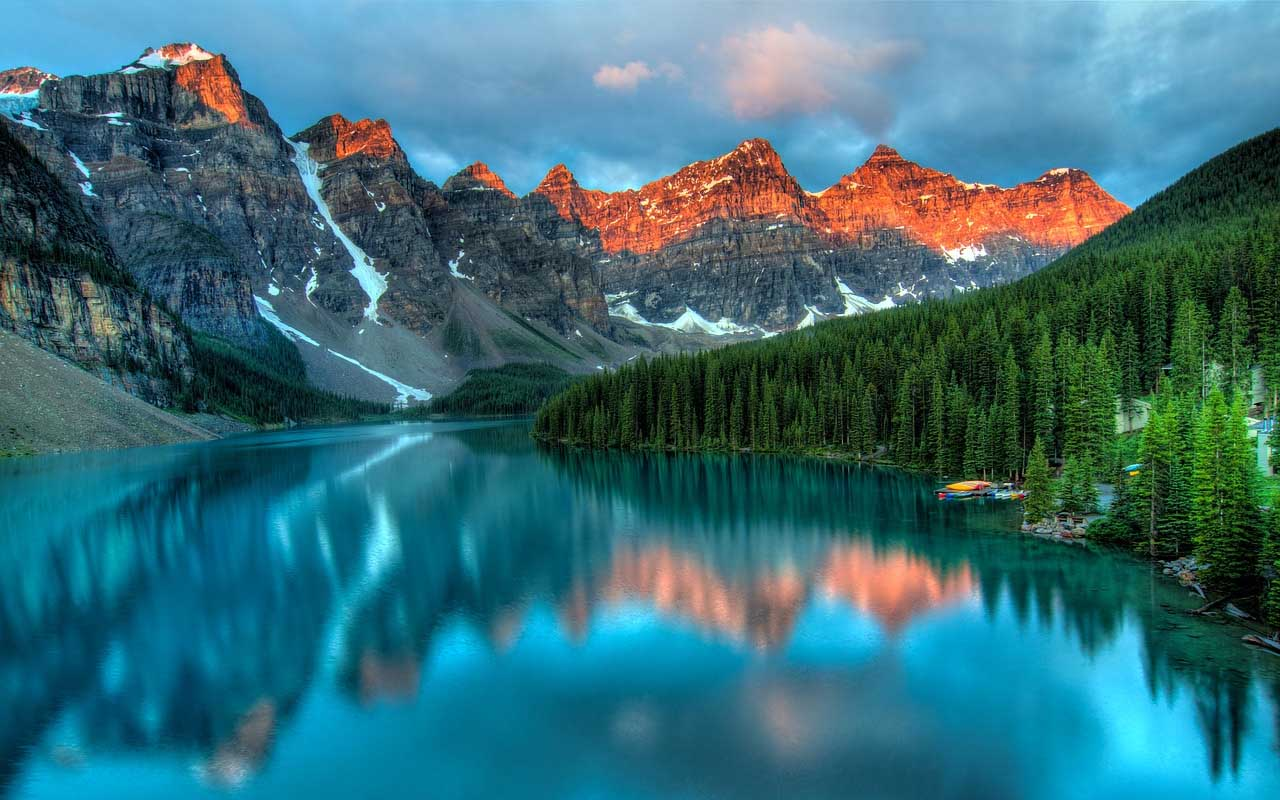 Alberta, Canada, rats, facts, mouse, life, animals