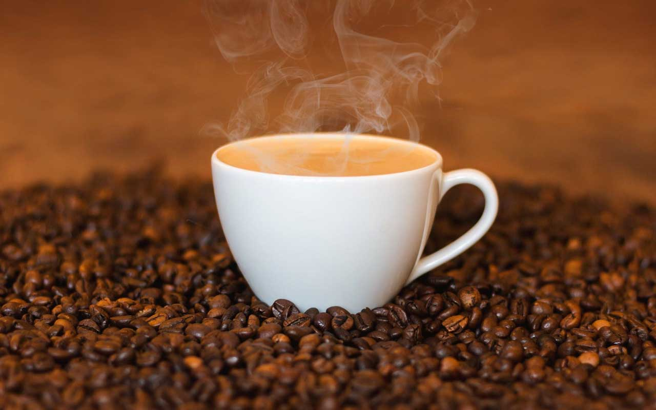 coffee, beans, food, facts, nature, science