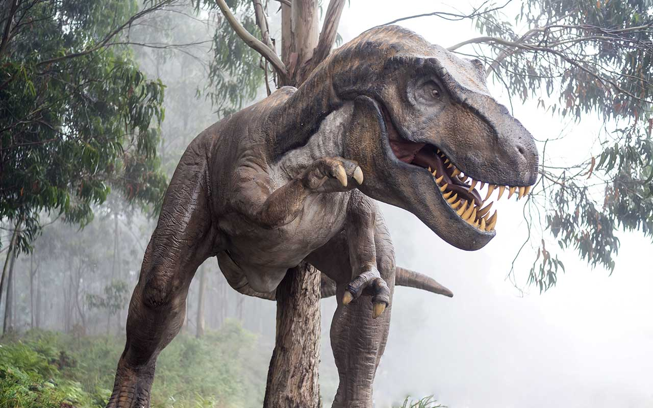 dinosaur, facts, sound effects, people, engineers, movies