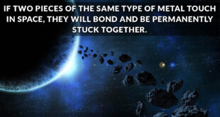space, facts, universe, NASA, people, astronauts