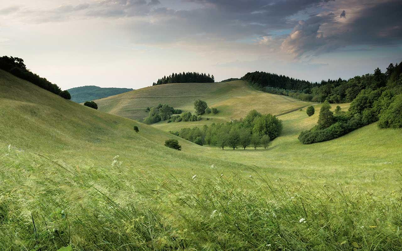 landscape, background, desktop, Mac, Apple, nature, green, relaxing