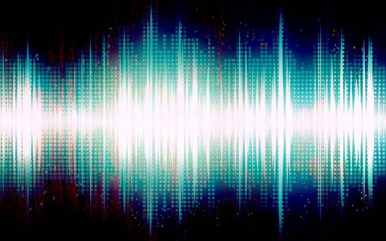 ultrasonic sound, vibrations, facts, animals, dolphins
