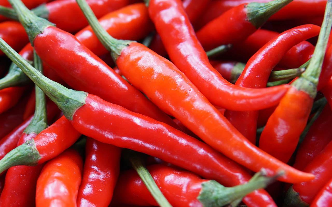 Chili pepper, capsaicin, red hot, sensation, mouth