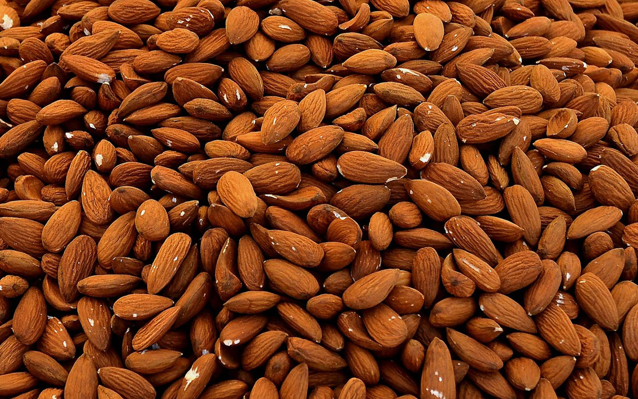 almonds, nuts, trees, seeds, facts, nature